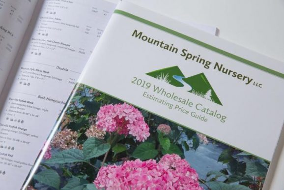 finished catalogs for plant nursery